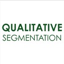 Qualitative Segmentation